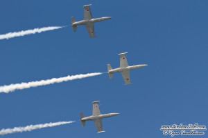 The Hoppers L-39s - Wings Over Waukegan Airshow 2014