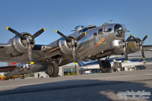 """B-17 Flying Fortress """"Yankee Lady"""" - Yankee Air Museum"""